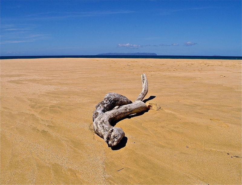 Barking Sands