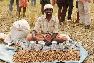 Peanut-vendor