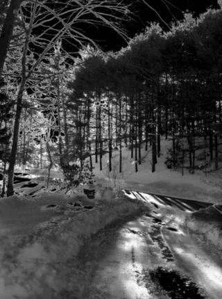 Driveway in Avon, CT after Storm Benedict, taken with infrared filter in CameraBag on iPhone, January 12, 2011