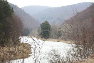 Pine Creek 4-4-2011(2)