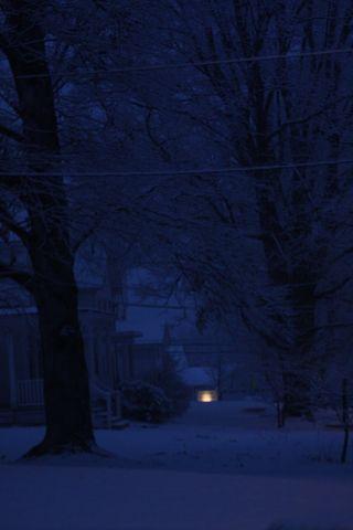 Streetlights 2-24-2012 004