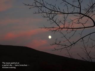 Bahso Moon
