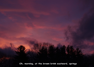 Dawn 1.25.3