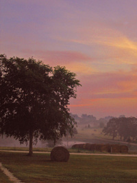 Sunrise_at_chappell_hill_s_2