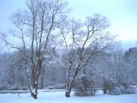 Wintersolitude2_1