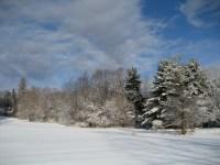 Wintersolitude3_1